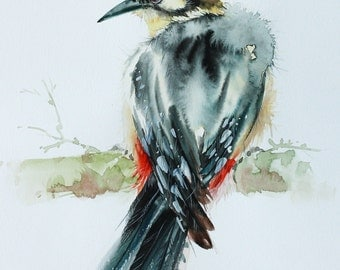 Great Spotted Woodpecker, Bird watercolor painting, Bird art, Art print size 8X10 inch for room décor & valuable gifts