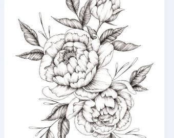Peony Flower Ink Drawing - A4 and A5 Prints