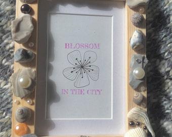Bembridge Seashell Photo Frame (full)