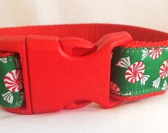 Peppermint Lollies Dog Collar