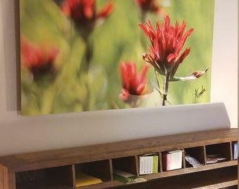 MADE TO ORDER - Large Metal Print - 'Paintbrush' Wall Art 24x36 - Easy to Hang Decor - Indian Paintbrush Wildflower Photo Wyoming