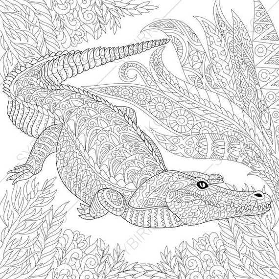 Crocodile. Alligator. 3 Coloring Pages. Animal coloring book