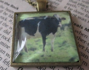 Pendant Necklace - Cow in Field - 1 Inch Square Antique Brass Setting With Matching Chain