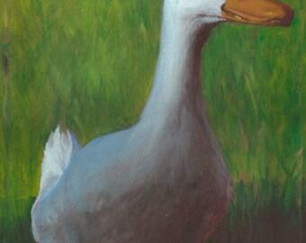 Coming in Shadow, Pekin, White Duck- Original Acrylic Painting