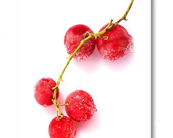 Frozen berries, Color Printing,Photography,Digital Photography,Digital Prints,white background,Pink,turquoise,Still Life,food, Red currant,
