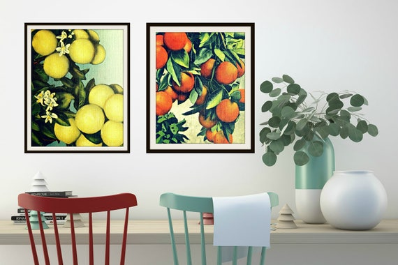 Grapefruit Oranges Mid Century Modern Colorful Art Colorful Kitchen Mid Century Modern Fruit Print Vintage Botanical Art Vintage Kitchen Art