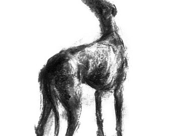 "Greyhound drawing ""Hope"" - fine art dog print, greyhound gift"