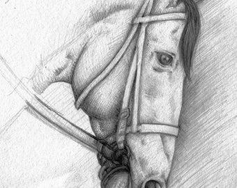 Original Pencil Drawing- Big Brown