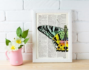 Summer Sale Butterfly detail Book print art - Hand painted Butterfly - Upcycled book page Art Dictionary book print BFL102b