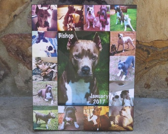 "Pet Memorial Picture Frame, Pet Collage Photo Frame, Custom Cat Frame, Personalized Dog Frame, Unique Pet Collage Picture Frame, 5"" x 7"""
