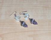 White Shell Earrings, Women's Earrings, Shell Charm Earrings