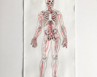Circulatory System Skeleton Patch - Sew On Anatomy Patch