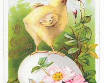 Primrose Chick and Egg Easter Postcard, 1911
