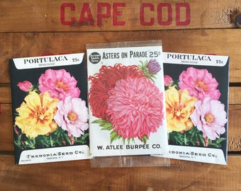 Vintage Flower Seed Packets / Portulaca Moss Rose Fredonia Seed Co / Asters on Parade W. Atlee Burpee Co / Outdoor Gardening Spring Decor