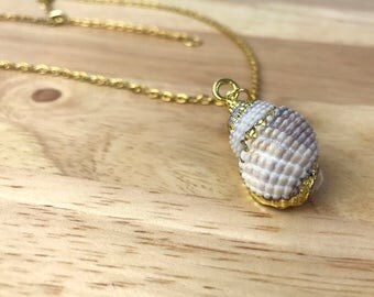 Seashell Necklace, Beach Jewelry, Gift for Her, Gold Shell Pendant, Ocean Necklace, Gold Chain Necklace, Gift for Mom, Ocean Jewelry