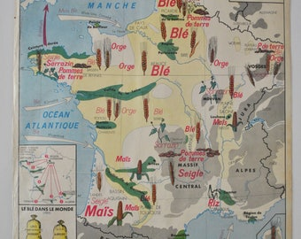 Old map double face MDI - cereals and vegetables, the seine and its tributaries - school French school poster