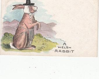 A Welsh Rabbit(Rarebit) Sweet Comic-Ethnic Wales Costume 1908 Antique Postcard