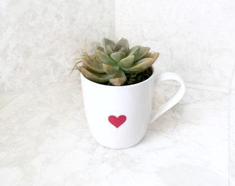 Heart Mug Succulent Planter - Love, Heart, Occassion Succulent Planter- Live Succulent Included