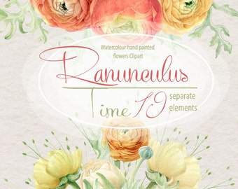 Watercolor flower Clipart, Ranunculus separate elements, Hyacinth, Hand painted, Wedding invitation, DIY, greeting card, PNG, Scrapbooking
