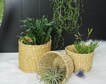 Woven Seagrass Planters, Set of 3