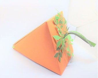 Carrot favor box -set of 2
