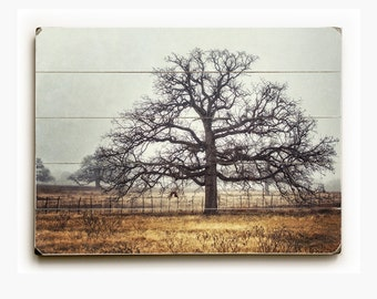 Rustic Farmhouse Decor Wood Planked Sign, Wood Wall Art, Oak Tree in Texas Landscape on Wood, Ready to Hang Country Home Decor, Beige Gray.