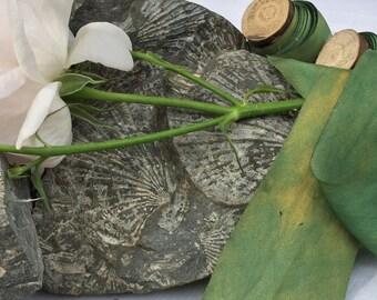 GREEN GOLD Plant dyed silk ribbon / habotai / hand dyed / pure silk / wedding ribbon / styling ribbon / gift ribbon