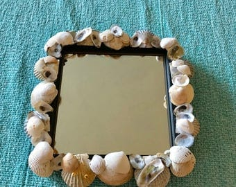 "9"" x 9"" Sea Shell Mirror Made with Shells from Cape Cod Great for Beach Cottage Decorating and Coastal Decor"