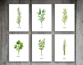 Kitchen Herbs Watercolor Illustration Art Print Set of 6 Option 1 Printable Instant Download