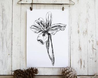 Iris flower sketch, Black and white flower print, Printable wall art, Spring decor,  Hostess gift, Sketch art