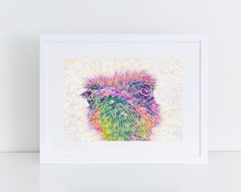 Rainbow Ostrich - Print of original artwork - art print