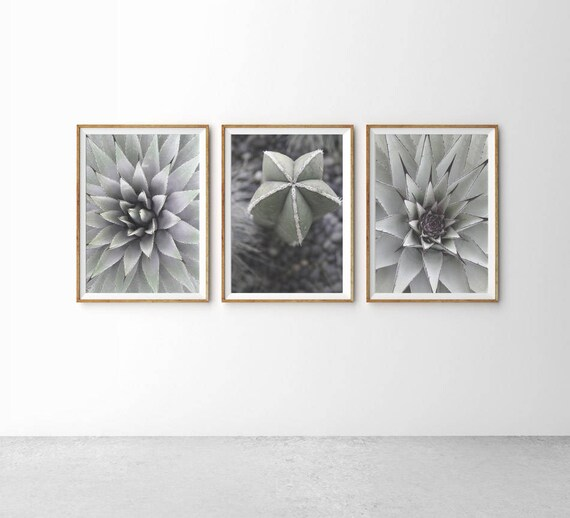 Wall Art Prints Download : Cactus print wall art prints printable set modern