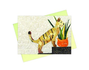 House Cat, Pack of 10 Greeting Card Set