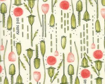 Moda Poppy Mae Quilt Fabric 1/2 Yard By Robin Pickens - Cloud 48602 11