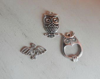 3 charms OWL / OWL silverplate 3 different designs