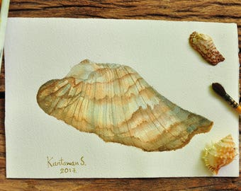 Shell painting, Original watercolor painting, Small painting, Art, Gift, Home decorate, size 7.5 x 11 inches