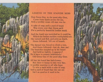 Vintage Linen Postcard, Legend of Spanish Moss, 111N, Ephemera, Travel Postcard