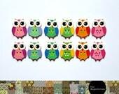 Bright Owl Fridge Magnet Set