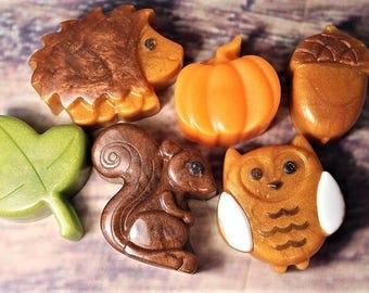 Fall Soap Set, Autumn Soap Set, Pumpkin Soap, Squirrel Soap, Owl Soap, Acorn Soap, Hedgehog Soap, Woodland Theme Party Favors, Thanksgiving