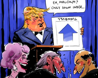 Trump/Turnbull cartoon