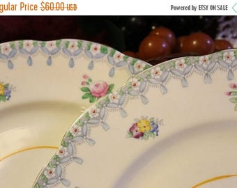 SALE Scarce Set of 2 Royal Albert Crown China Dinner Plates - Blue Torquay Pattern