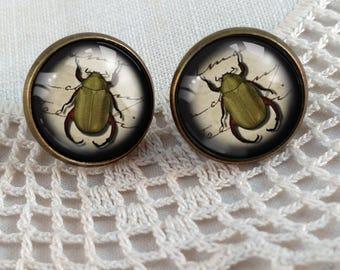 Green Beetle Stud Earrings