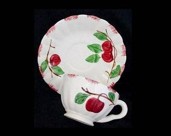 Blue Ridge Cup and Saucer AUTUMN APPLE Tea or Coffee Southern Potteries Handpainted Colonial Shape Red Fruit (B21) 6673