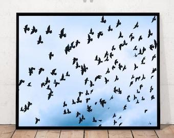 Birds Print, Birds Sky Decor, Birds Photography, Birds Photo, Bird Decor, Print with Birds, Birds Artwork, Birds in Sky Print,