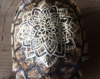 Hand painted mandala turtle shell