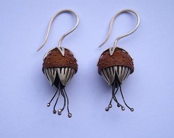 Silver earrings, oak capsule with spores