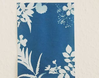 Cyanotype Flowers Original A5