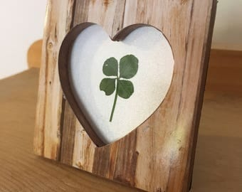 Real Four Leaf Clover in Rustic Tree Heart Frame (Choice of Stand or Magnet)