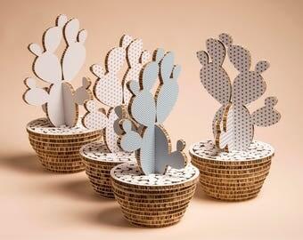 Mini Camaleo Cactus