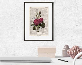 Print - Moss ROSE - antique book page